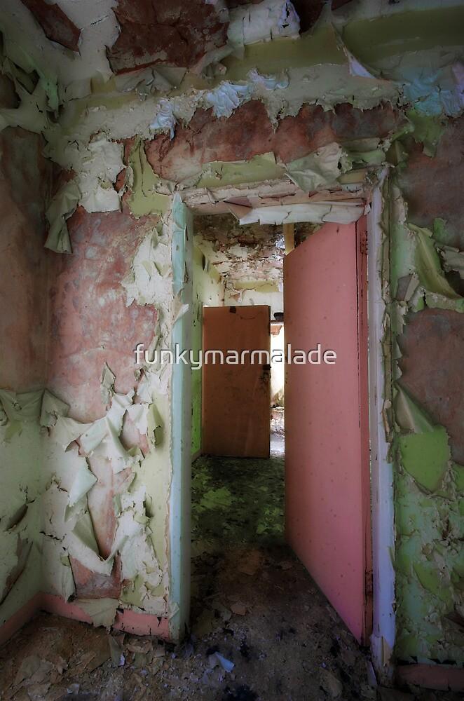 *doors* by funkymarmalade