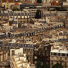 The Roofs of Paris  by Virginia Maguire