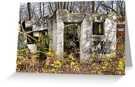 Haven's Cottage Bungalo Ruins by wiscbackroadz