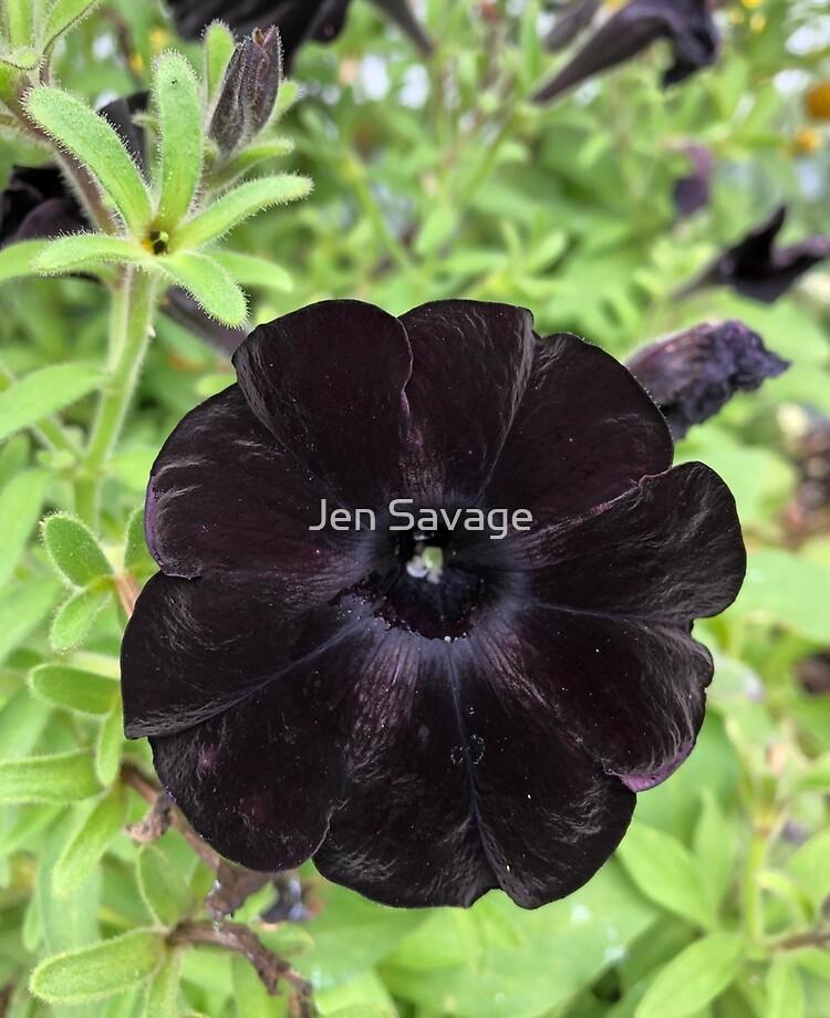 Black Petunia Ipad Case Skin By Politefacade Redbubble