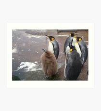 Edinburgh Zoo: baby penguin Art Print