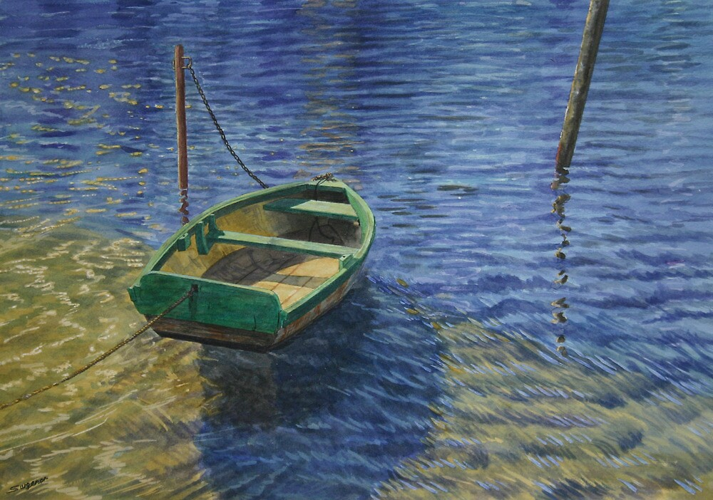 Sunshine and ripples by Freda Surgenor