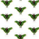 Spanish Luna Moth by Madelynjanelle