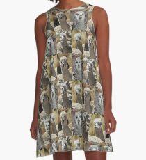 Vicuñas (Vicugna vicugna) A-Line Dress