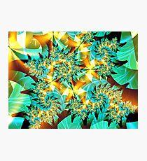 Green Lights Photographic Print