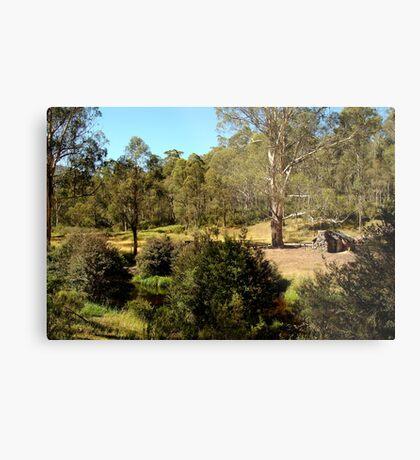 Bindaree Hut,Victorian High Country Metal Print