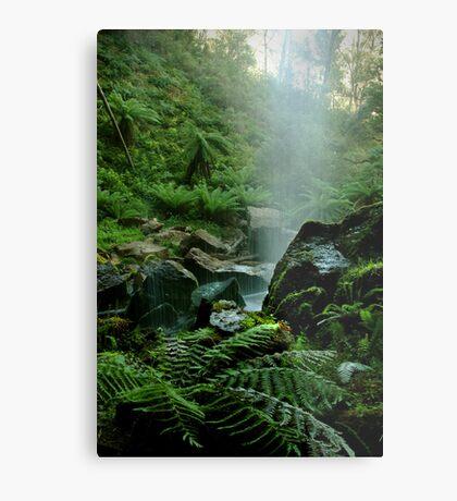Binderee Falls Victorian High Country Metal Print