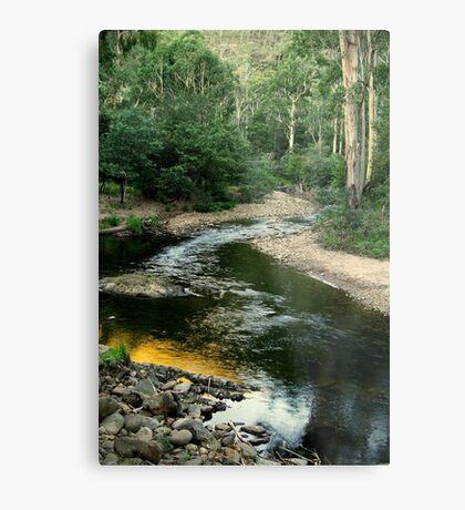 Wonangatta Valley, Victorian High Country Metal Print