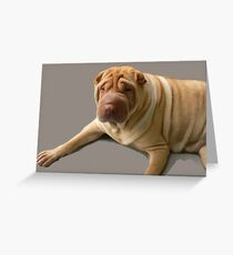 Wrinkles Greeting Card