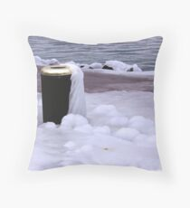 Frozen Bin  Throw Pillow