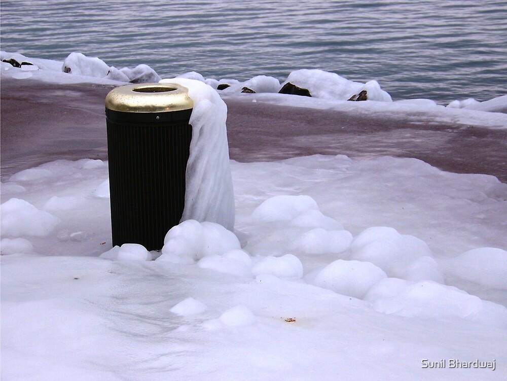 Frozen Bin  by Sunil Bhardwaj