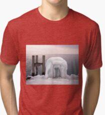 Frozen  Tri-blend T-Shirt