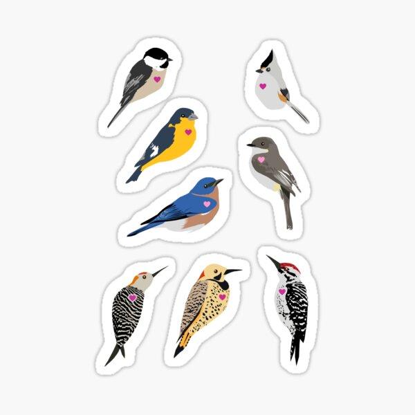 I Heart Birds Sticker