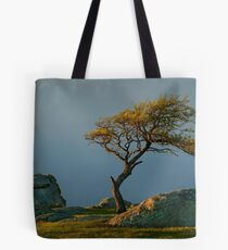 Dog Rocks, Batesford Victoria Tote Bag