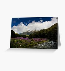 Lupin Valley Greeting Card
