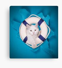 rescue cat Canvas Print