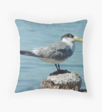 Crested Tern Throw Pillow