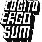 Cogito Ergo Sum by Clifford Sosis