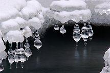 Silver Bells by Stephen Beattie