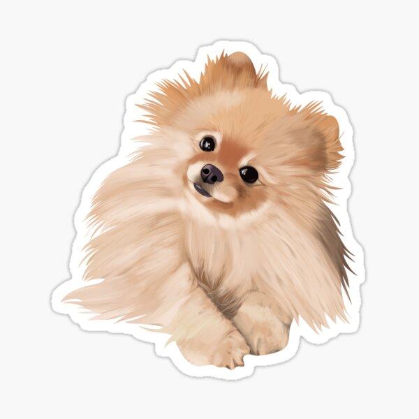 Decal Prinzessin Zwergspitz Pomeranian Herz Hund Auto Aufkleber Wunschtext