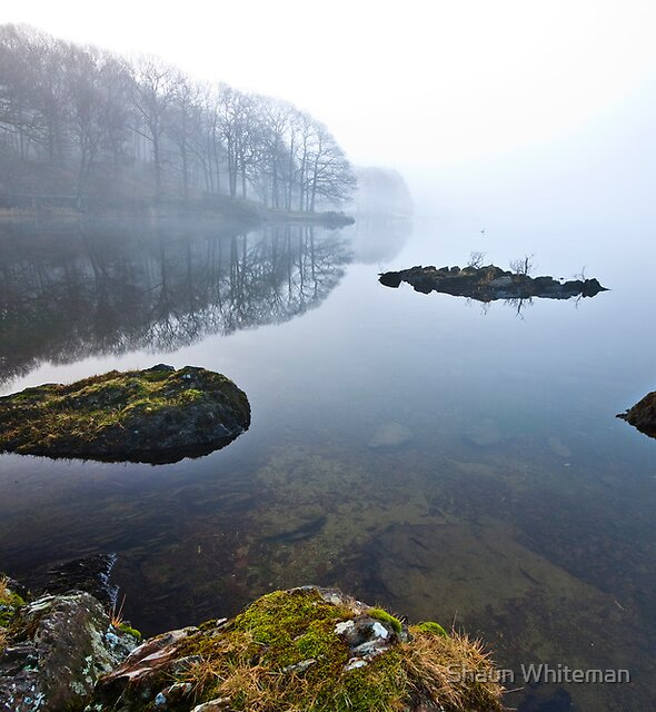 Foggy morning on Coniston water  by Shaun Whiteman