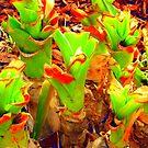 Funky green by JohnYo