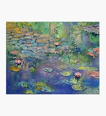 Water Garden Photographic Print