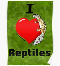 "Normal Leopard Gecko ""I love Reptiles"" Poster"