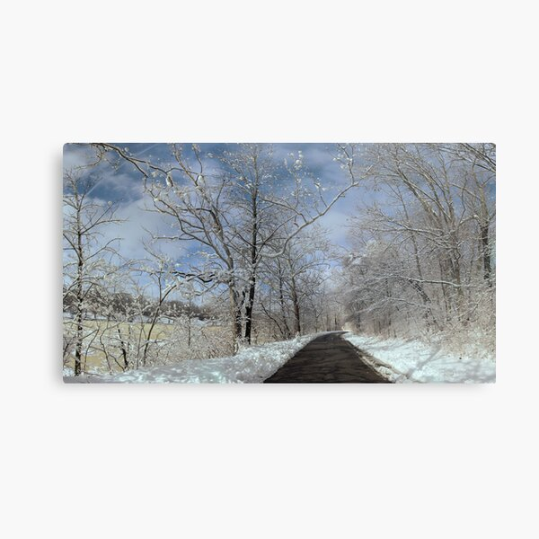The long winter road along the Scioto Metal Print