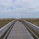 The Beaches of Ocracoke and Hatteras Islands, North Carolina by DianaTaylor/ JacksonDunes