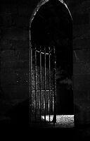 Beyond the black gate by wildone