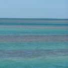 Blue In The Florida Keys by DianaTaylor/ JacksonDunes
