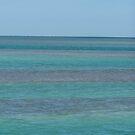Blue In The Florida Keys by DianaTaylor/ JacksonDunes