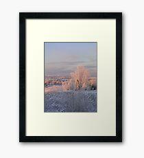 The Morning Frost Framed Print