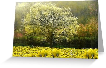 Spring Dream Fantasy by NatureGreeting Cards ©ccwri