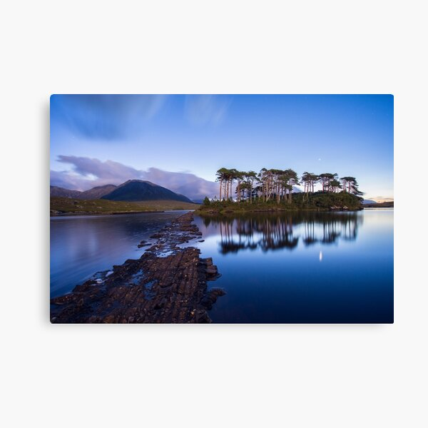 Pine Island in the light of a full moon, Galway, Ireland Canvas Print