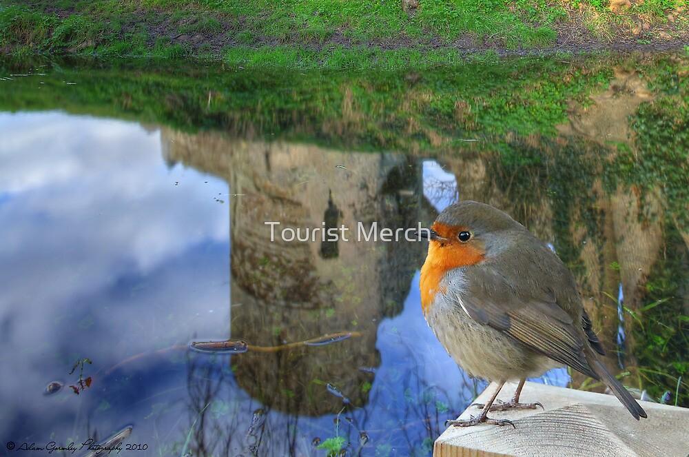 Robin enjoying the Castle Reflections by Adam Gormley