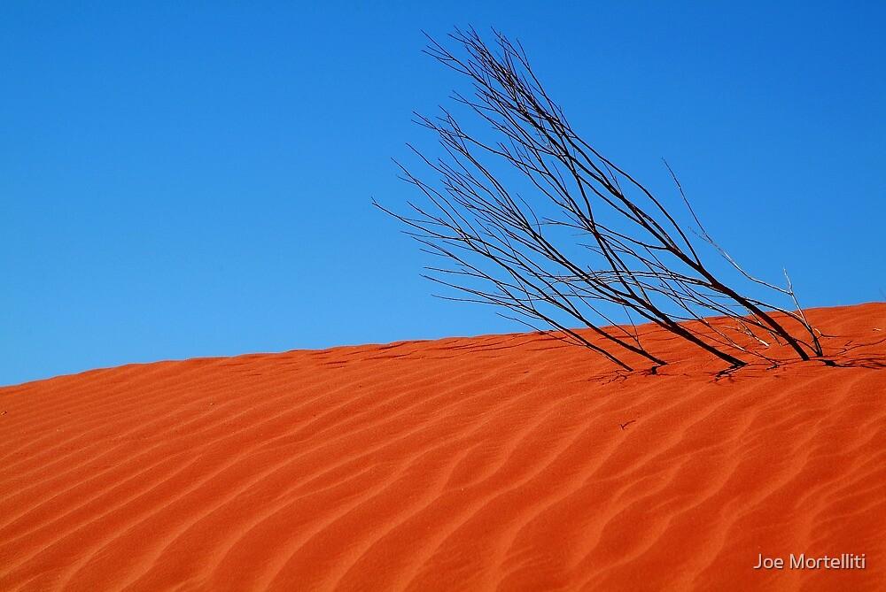 Desert,N.T. by Joe Mortelliti