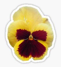 Yellow Pansy Sticker