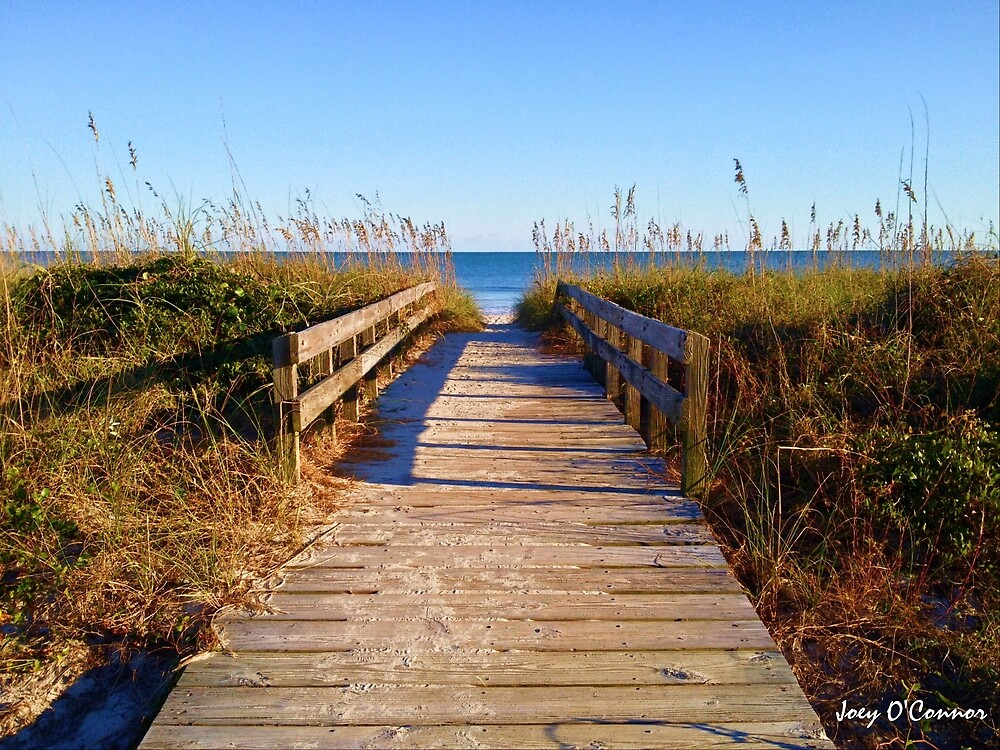 Short Walkway To The Beach by Joey O'Connor