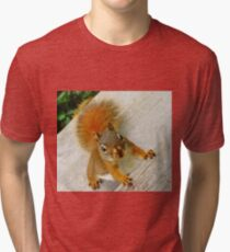 Just How Many Red Squirrels Does It Take To Drive You CRAZY? Tri-blend T-Shirt