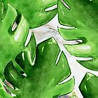 Watercolor Monstera on Marble by cadinera