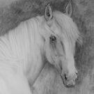 Noble gray by stepanka