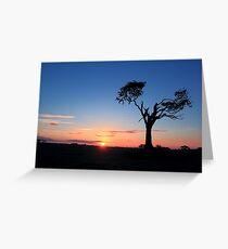 Sunrise...Just Waking Up Greeting Card
