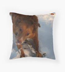Snow Happy Throw Pillow