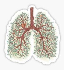 Lungs Sticker