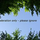 Moderation Banner by Themis