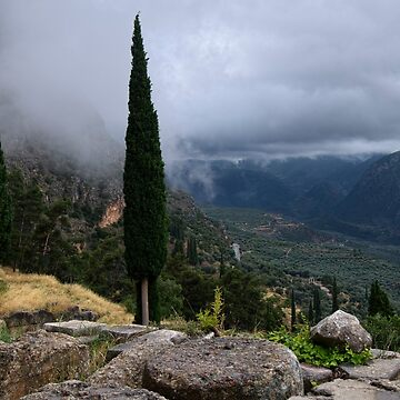 The View in Delphi, Greece by GVAZDesigns