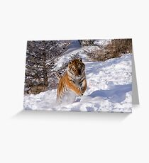 I'm Coming for You! Greeting Card