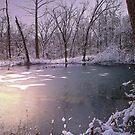 Pond Aglow..... by BransonPhotos